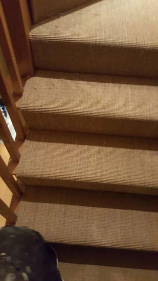 portfolio carpets - brown stairs 07