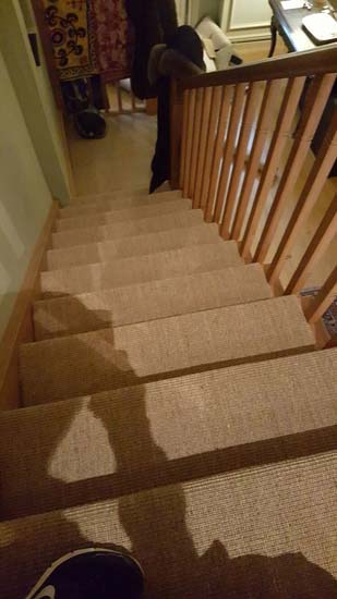 portfolio carpets - brown stairs 08