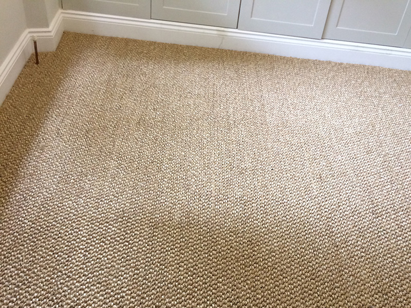 sisal 101, bedroom carpet