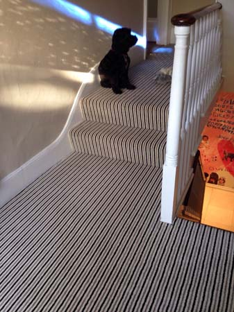 stripe usual way stair carpet 10