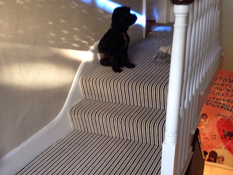 stripe usual way stair carpet
