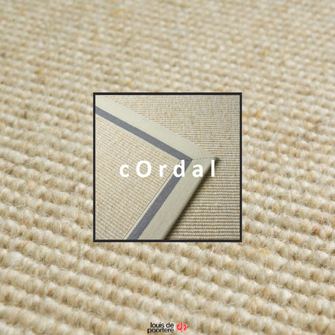 x-Cordal cover